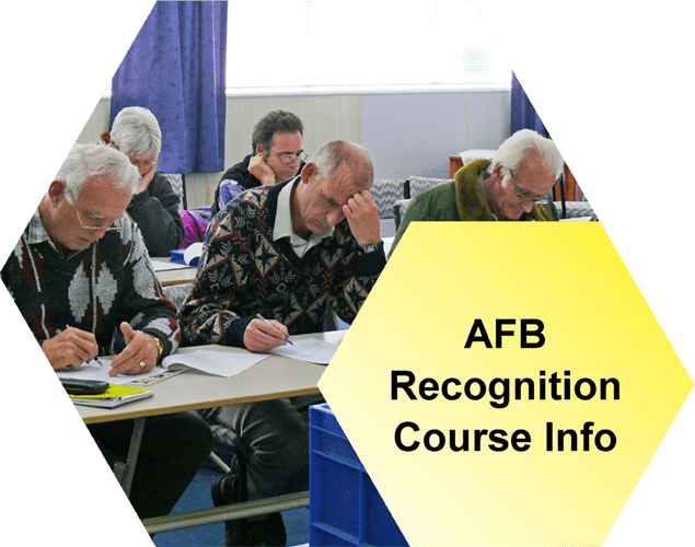 AFB Course Info