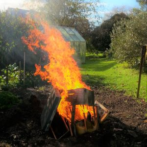 Burning AFB infected hive, photo courtesy of John Graham