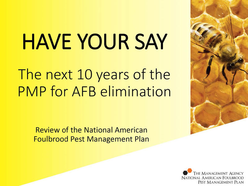 AFB PMP Consultation